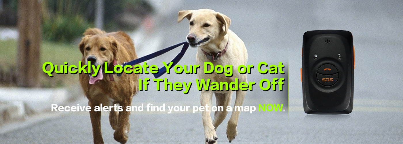 gps_tracker_for_pet